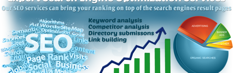 explogic-seo-page-banner1